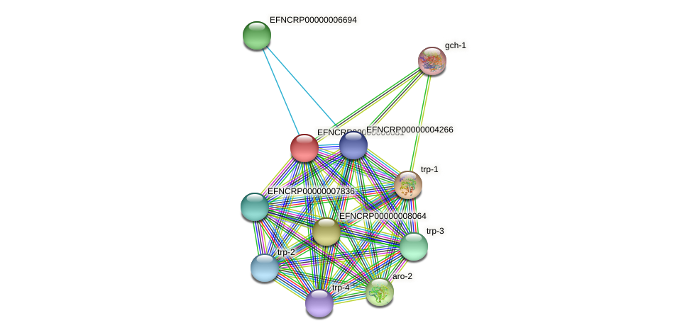 EFNCRP00000006681 protein (Neurospora crassa) - STRING interaction network