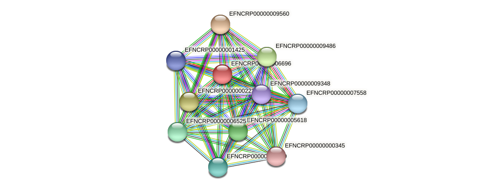 EFNCRP00000006696 protein (Neurospora crassa) - STRING interaction network