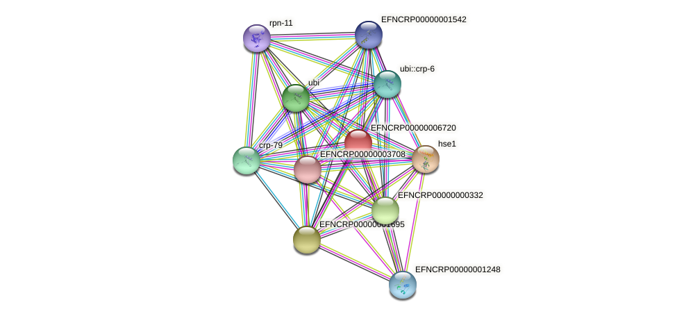 EFNCRP00000006720 protein (Neurospora crassa) - STRING interaction network