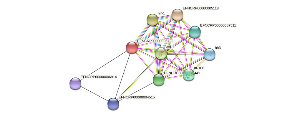 EFNCRP00000006722 protein (Neurospora crassa) - STRING interaction network