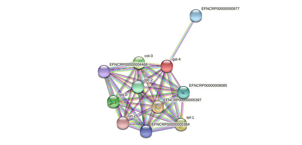 gst-4 protein (Neurospora crassa) - STRING interaction network