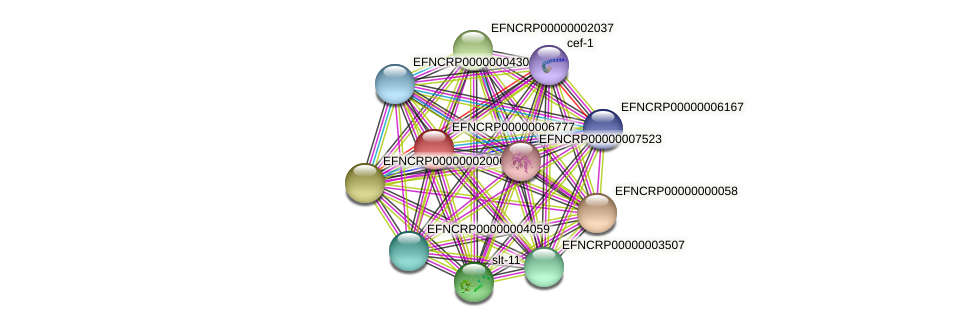 EFNCRP00000006777 protein (Neurospora crassa) - STRING interaction network