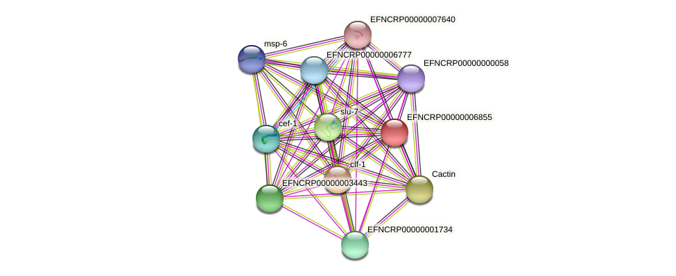 B24N11.190 protein (Neurospora crassa) - STRING interaction network