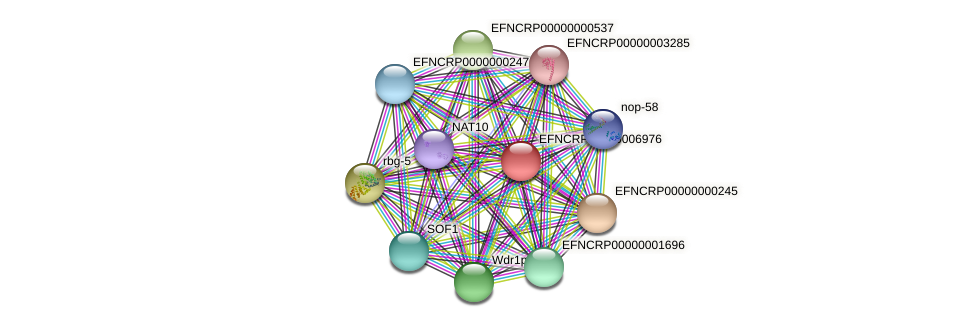 EFNCRP00000006976 protein (Neurospora crassa) - STRING interaction network