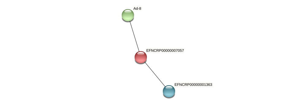 EFNCRP00000007057 protein (Neurospora crassa) - STRING interaction network