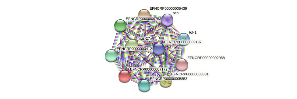 EFNCRP00000007172 protein (Neurospora crassa) - STRING interaction network