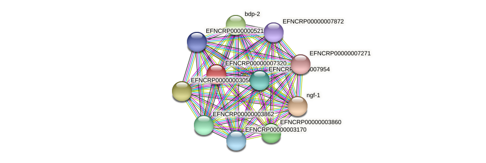 EFNCRP00000007320 protein (Neurospora crassa) - STRING interaction network
