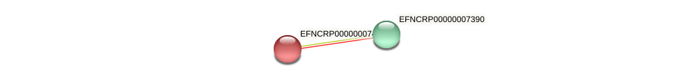 EFNCRP00000007400 protein (Neurospora crassa) - STRING interaction network