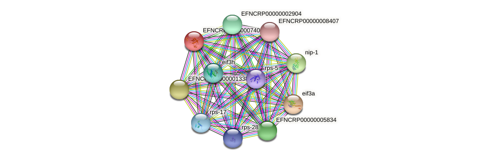 EFNCRP00000007409 protein (Neurospora crassa) - STRING interaction network