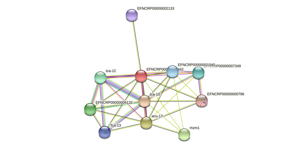 EFNCRP00000007442 protein (Neurospora crassa) - STRING interaction network