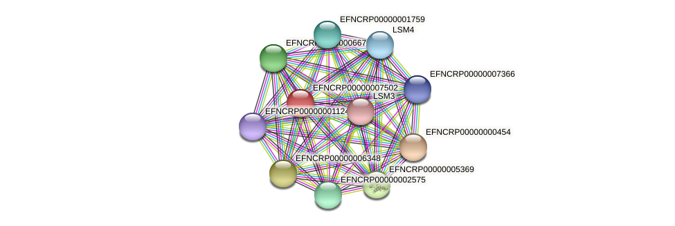 EFNCRP00000007502 protein (Neurospora crassa) - STRING interaction network