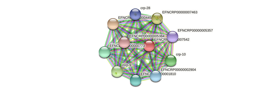 B11E5.360 protein (Neurospora crassa) - STRING interaction network