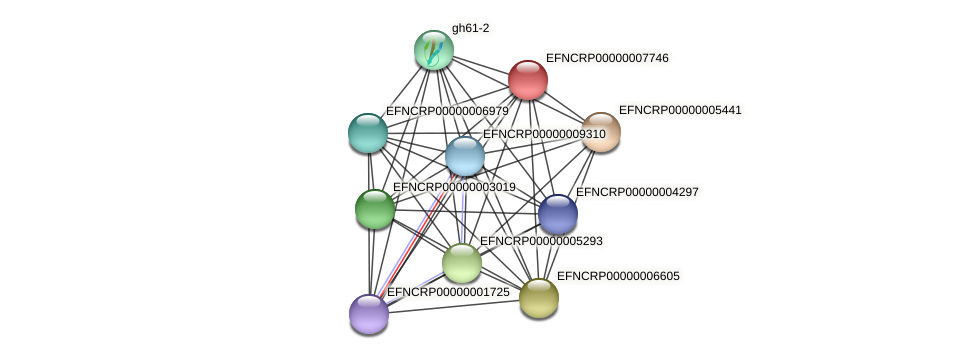 EFNCRP00000007746 protein (Neurospora crassa) - STRING interaction network