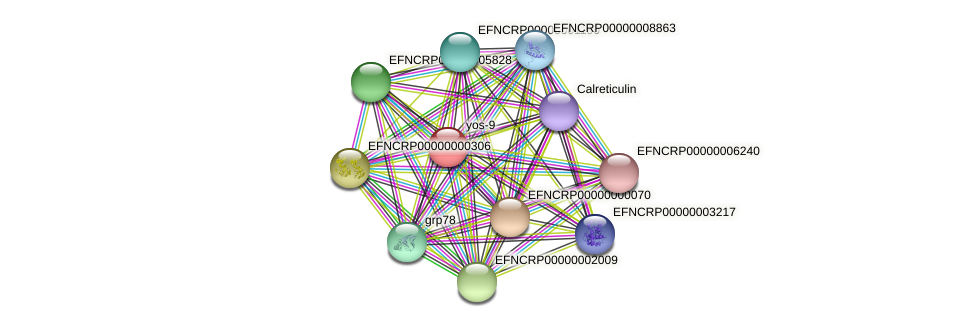 EFNCRP00000007811 protein (Neurospora crassa) - STRING interaction network