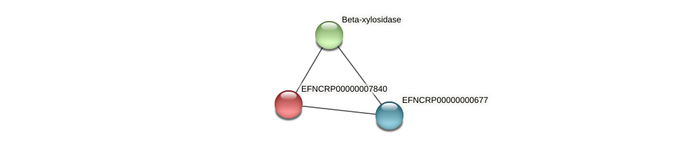 EFNCRP00000007840 protein (Neurospora crassa) - STRING interaction network