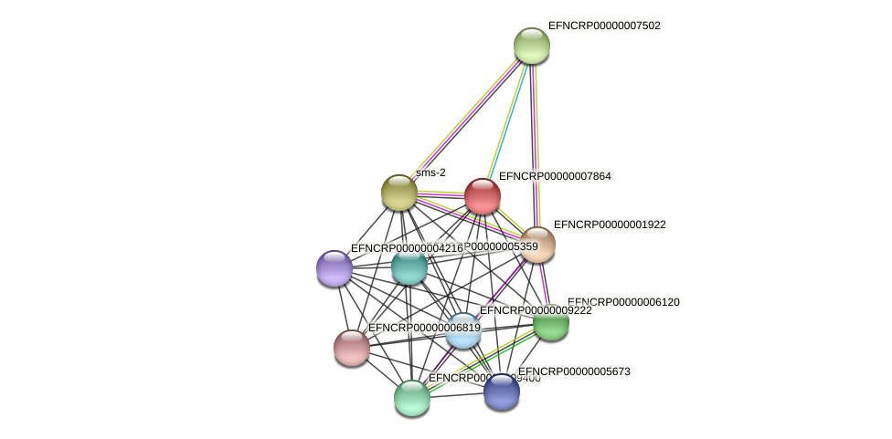 EFNCRP00000007864 protein (Neurospora crassa) - STRING interaction network