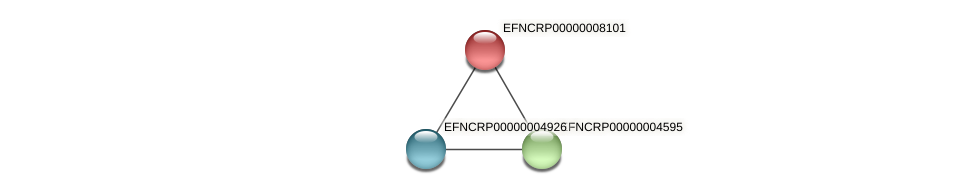 EFNCRP00000008101 protein (Neurospora crassa) - STRING interaction network