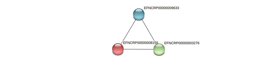 EFNCRP00000008155 protein (Neurospora crassa) - STRING interaction network