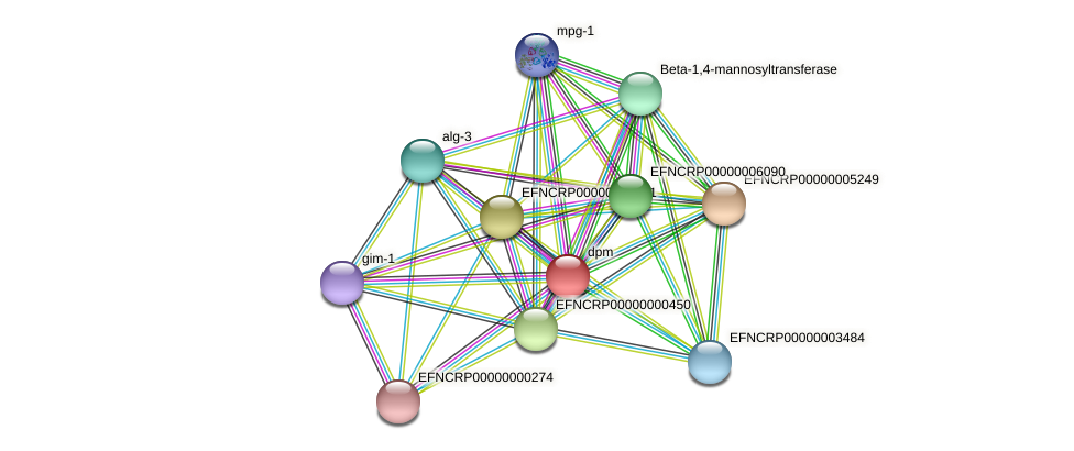 dpm protein (Neurospora crassa) - STRING interaction network