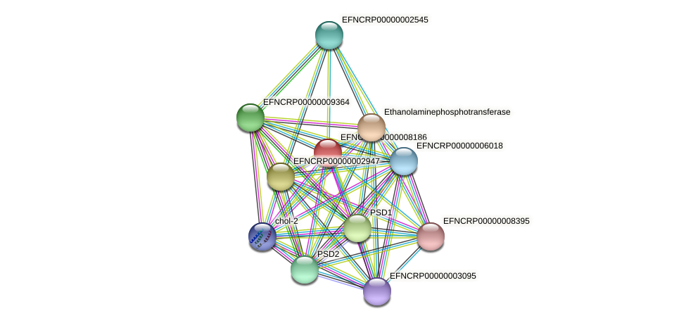 EFNCRP00000008186 protein (Neurospora crassa) - STRING interaction network