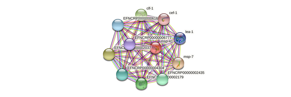 EFNCRP00000008259 protein (Neurospora crassa) - STRING interaction network