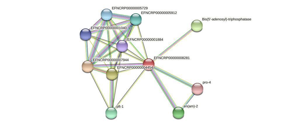 EFNCRP00000008281 protein (Neurospora crassa) - STRING interaction network
