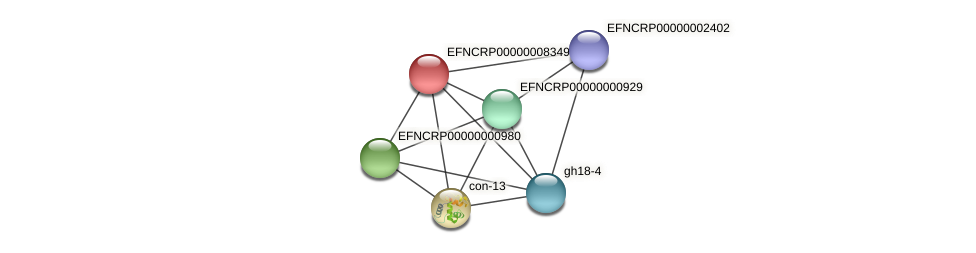 EFNCRP00000008349 protein (Neurospora crassa) - STRING interaction network