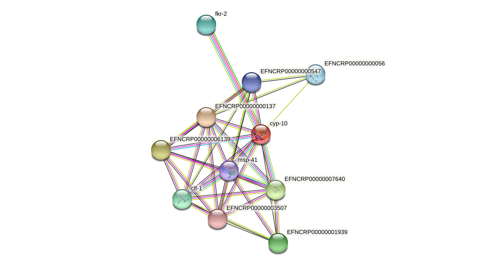 EFNCRP00000008445 protein (Neurospora crassa) - STRING interaction network