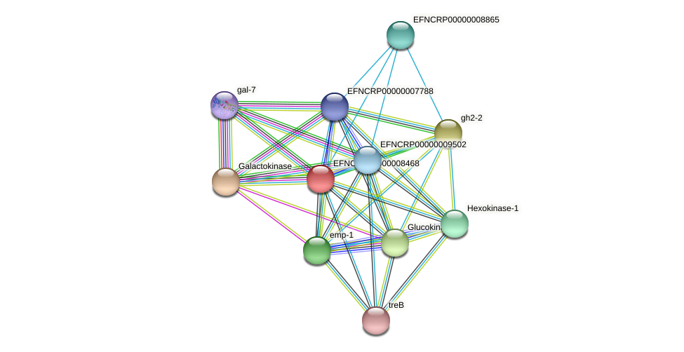 EFNCRP00000008468 protein (Neurospora crassa) - STRING interaction network