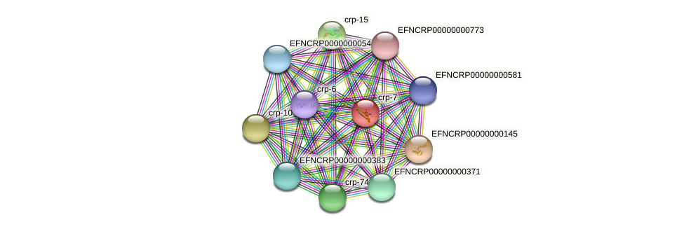 crp-7 protein (Neurospora crassa) - STRING interaction network