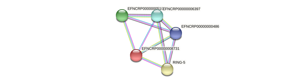 EFNCRP00000008731 protein (Neurospora crassa) - STRING interaction network