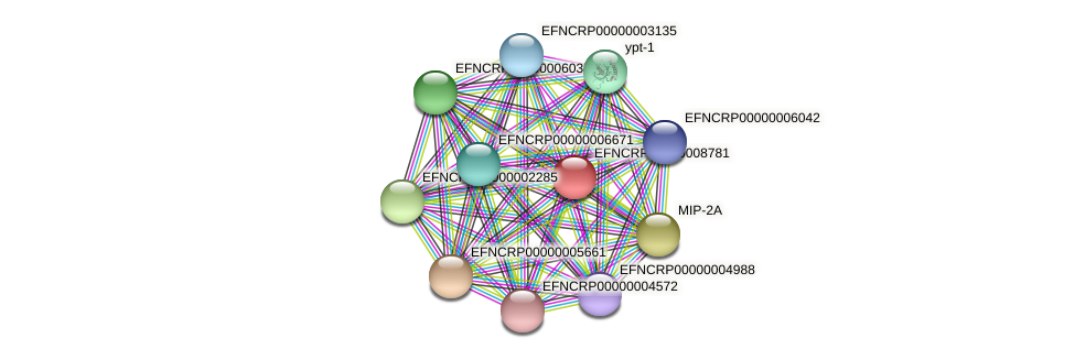 EFNCRP00000008781 protein (Neurospora crassa) - STRING interaction network