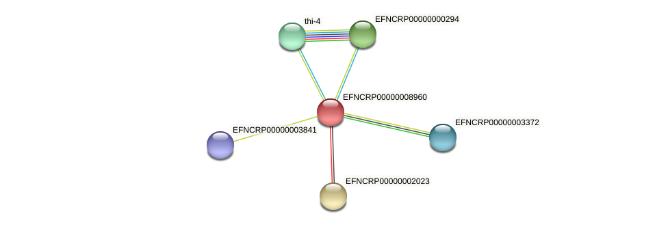 EFNCRP00000008960 protein (Neurospora crassa) - STRING interaction network