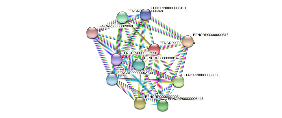 EFNCRP00000008980 protein (Neurospora crassa) - STRING interaction network