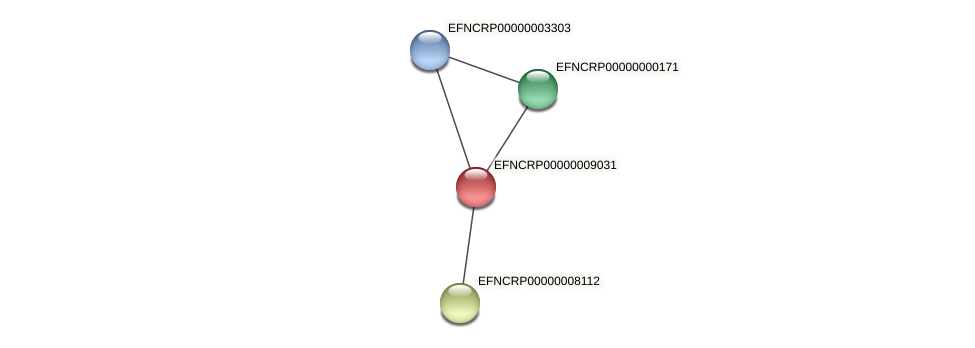 EFNCRP00000009031 protein (Neurospora crassa) - STRING interaction network