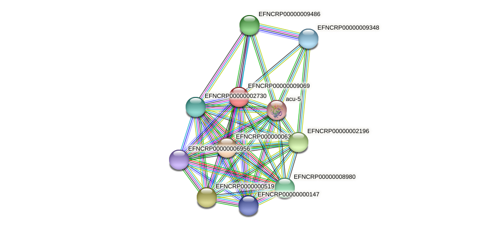 EFNCRP00000009069 protein (Neurospora crassa) - STRING interaction network