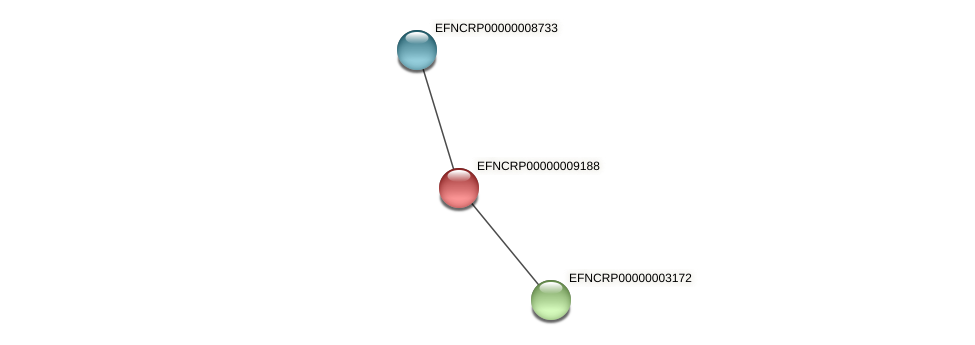 EFNCRP00000009188 protein (Neurospora crassa) - STRING interaction network