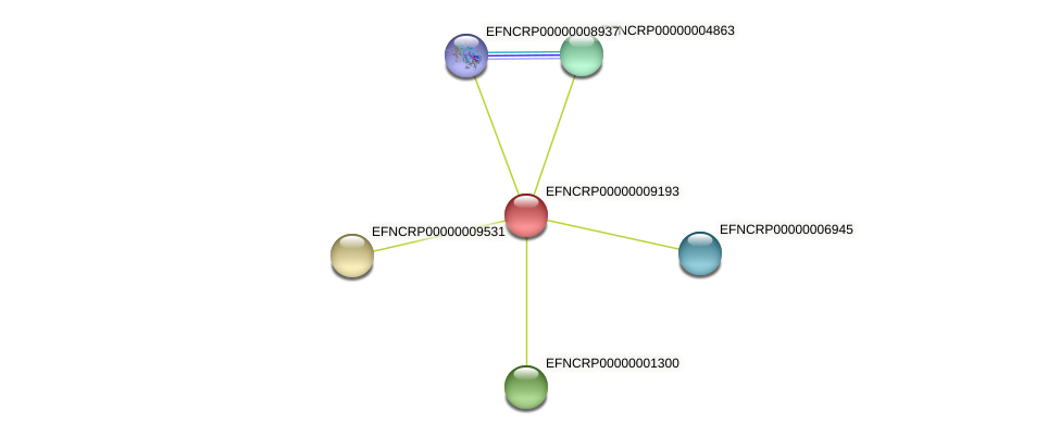 EFNCRP00000009193 protein (Neurospora crassa) - STRING interaction network
