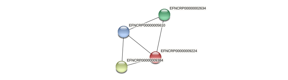 EFNCRP00000009224 protein (Neurospora crassa) - STRING interaction network