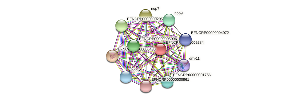 B22K18.070 protein (Neurospora crassa) - STRING interaction network