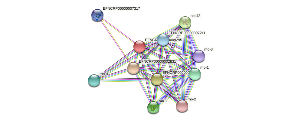 EFNCRP00000009295 protein (Neurospora crassa) - STRING interaction network