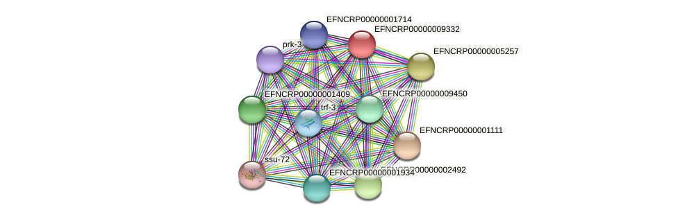 EFNCRP00000009332 protein (Neurospora crassa) - STRING interaction network