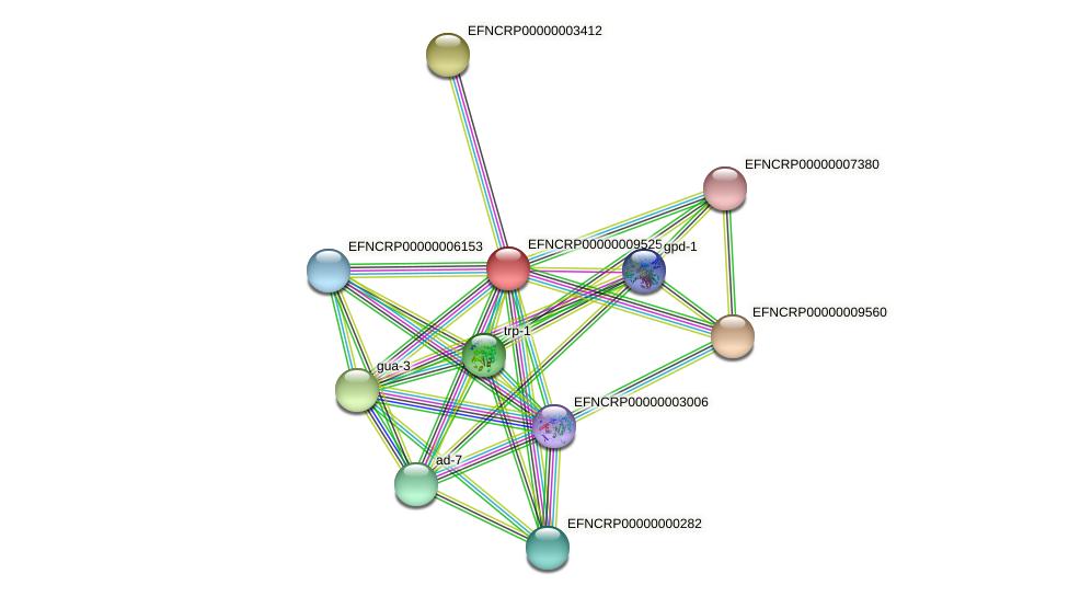 EFNCRP00000009525 protein (Neurospora crassa) - STRING interaction network