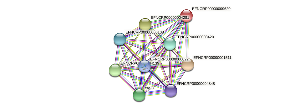 EFNCRP00000009620 protein (Neurospora crassa) - STRING interaction network