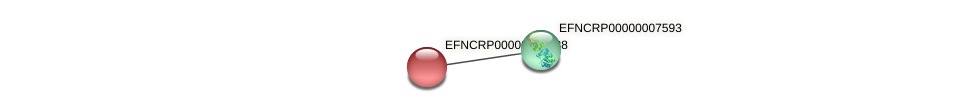 EFNCRP00000009688 protein (Neurospora crassa) - STRING interaction network