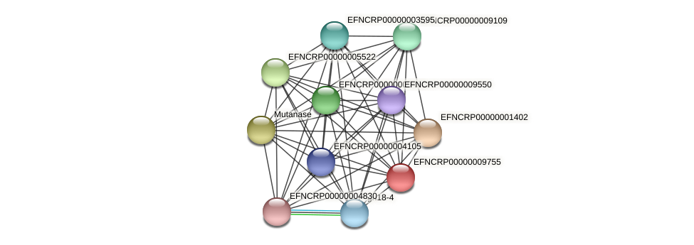 EFNCRP00000009755 protein (Neurospora crassa) - STRING interaction network
