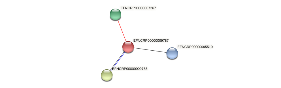 EFNCRP00000009787 protein (Neurospora crassa) - STRING interaction network