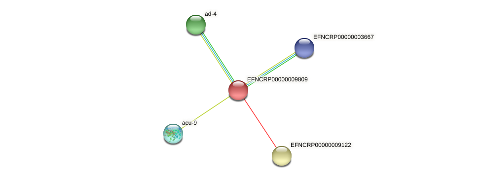 EFNCRP00000009809 protein (Neurospora crassa) - STRING interaction network