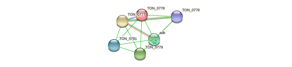 TON_0778 protein (Thermococcus onnurineus) - STRING interaction network