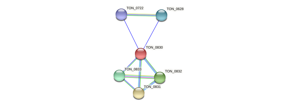 TON_0830 protein (Thermococcus onnurineus) - STRING interaction network